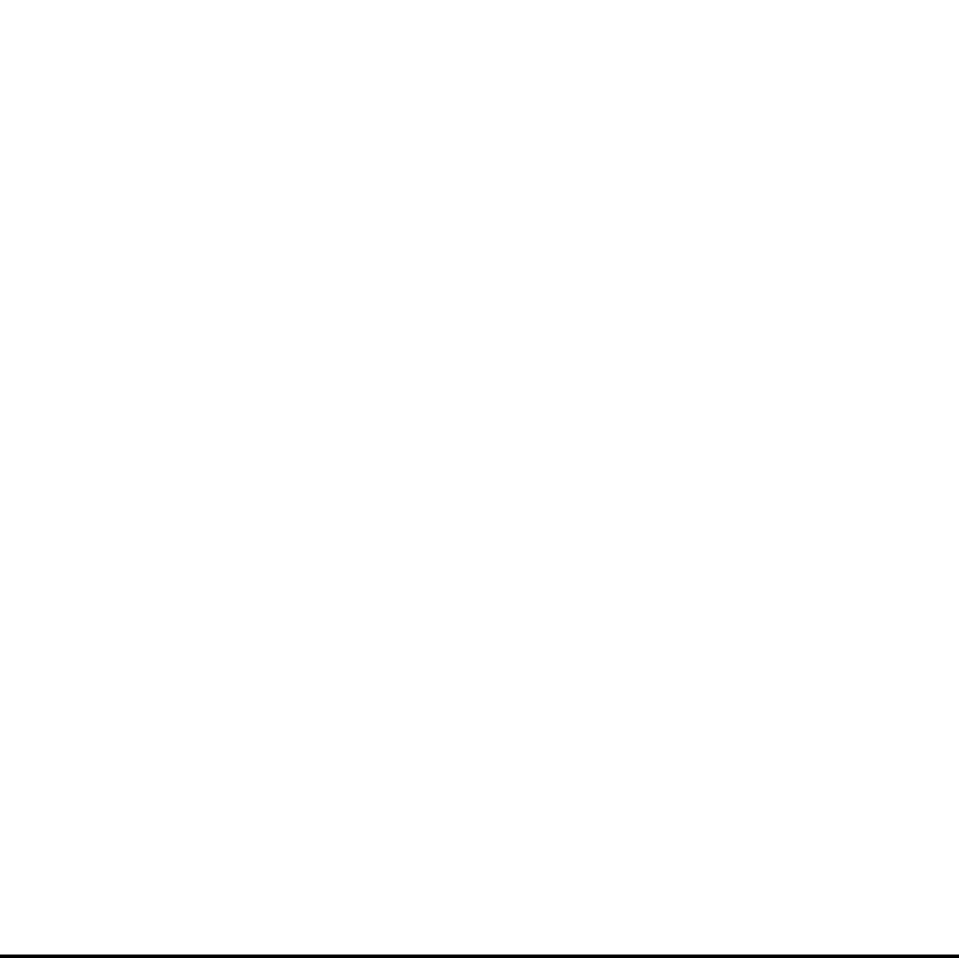 PYE Logo white graphic
